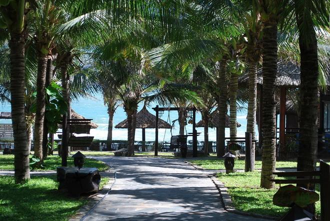 Лучшие отели Вьетнама в городе Муйне